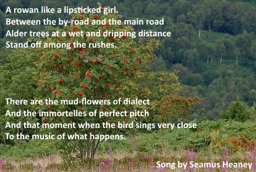 Seamus Heaney Song